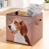 Cutie depozitare pliabila Beagle