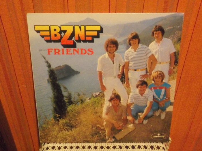 -Y-  BZN - FRIENDS   VINIL LP