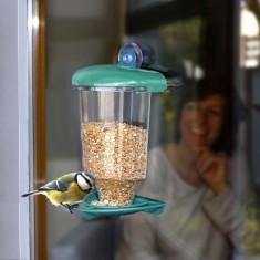 Hranitoare pasari pentru fereastra cu ventuza - Porci
