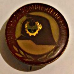 INSIGNA PIONIER PRIETEN AL POMPIERILOR FRUNTAS MICA DIAMETRU 20 MM PIONIERI