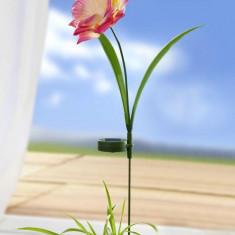 Decoratiune solara trandafir - Clepsidra