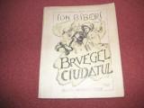 Ion Biberi - Bruegel Ciudatul  - 1940