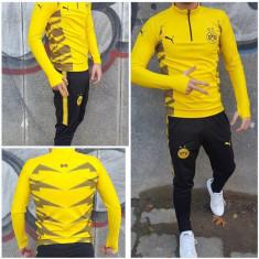 Trening Borussia Dortmund pantalon conic noul model 2018 - Trening barbati, Marime: S, Culoare: Galben, Microfibra