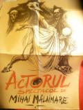 Afis pt. Piesa de Teatru - Actorul -Spectacol de Mihai Malaimare , 49x70 cm