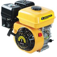 Motor benzina Gospodarul Profesionist 6.5CP - Motor electric