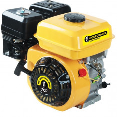 Motor benzina Gospodarul Profesionist 7CP - Motor electric