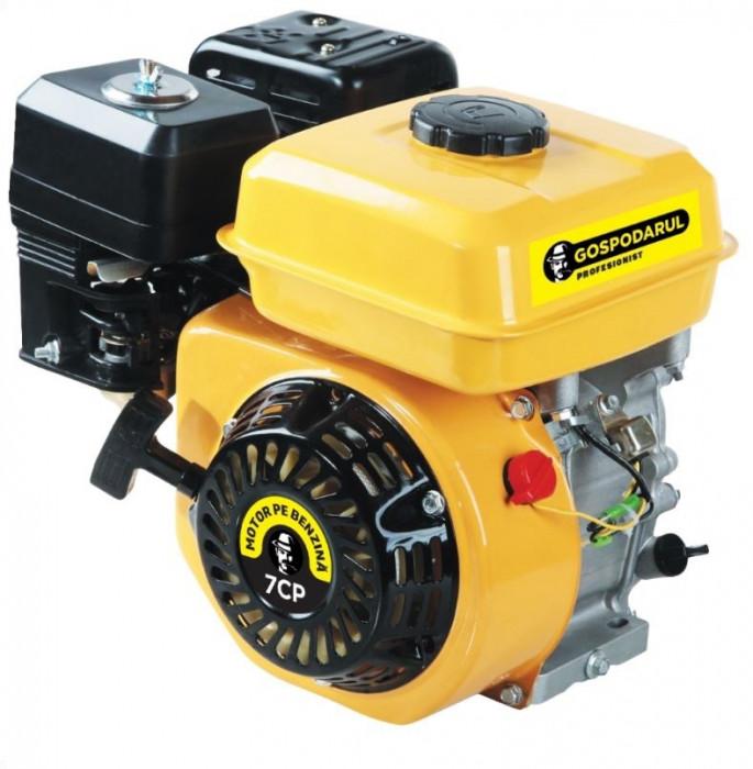 Motor benzina Gospodarul Profesionist 7CP foto mare