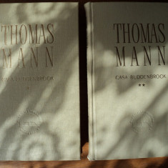 Casa Buddenbrook  : declinul unei familii / Thomas Mann (Premiul Nobel 1929)
