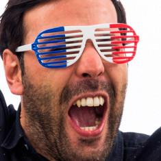 Ochelari cu Dungi Steagul Franței