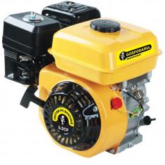 Motor benzina Gospodarul Profesionist 5.5CP - Motor electric