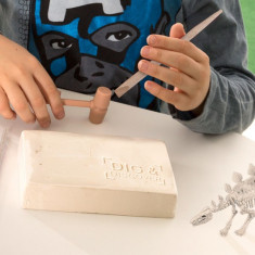 Joc de Paleontologie pentru Copii