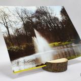 Suport foto lemn masiv de tei finisat si polisat felie rondele
