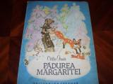 CALIN  GRUIA  -  PADUREA  MARGARITEI  (carte pentru copii, rara, cu ilustratii ), Calin Gruia