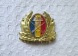 Emblema cascheta ofiter infanterie , emblema coifura armata romana MapN, cuc