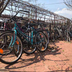 Biciclete De Vanzare - Bicicleta Trekking Peugeot, 15 inch, 14 inch, Numar viteze: 8