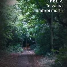 Felix in valea umbrei mortii - Vasile Radu