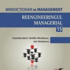 Minidictionar De Management 15: Reengineeringul Managerial - Ovidiu Nicolescu