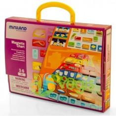 Joc piramida alimentelor 3-6 ani Miniland - Jocuri arta si creatie