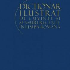 Dictionar ilustrat de cuvinte si sensuri recente in limba romana - Manual scolar