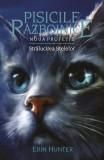 Pisicile Razboinice Vol.10: Stralucirea stelelor - Erin Hunter, Erin Hunter
