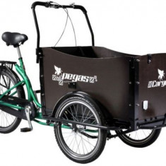 Bicicleta Pegas Cargo Adult 26x20, Roti 26inch, 3 Viteze (Verde) - Bicicleta de oras