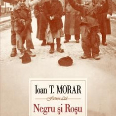 Negru si Rosu - Ioan T. Morar