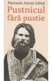 Pustnicul Fara Pustie - Parintele Antim Gaina