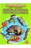 Soparle, crocodili, salamandre, tritoni - Cartonase - Silvia Ursache, Silvia Ursache