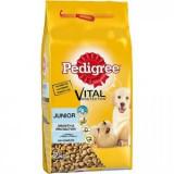Pedigree Dry 2kg Junior Talie Mica Adult