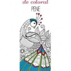 Colorez semnele mele de carte - Pene - Semn de carte