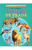 Animale de prada - Cartonase - Silvia Ursache