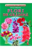 Flori de gradina - Cartonase - Silvia Ursache, Silvia Ursache