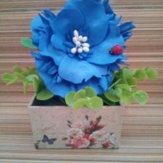 Floare albastra in cutie