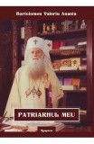 Patriarhul meu - Bartolomeu Valeriu Anania