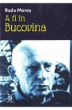 A fi in Bucovina - Radu Mares