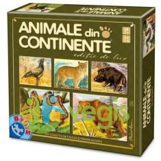 Joc Animale din continente - Joc colectie