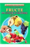 Fructe de livada si gradina - Cartonase - Silvia Ursache, Silvia Ursache