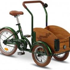 Bicicleta Pegas Mini Cargo 1S (Verde) - Bicicleta copii