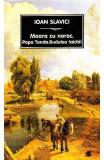 Moara cu noroc - Ioan Slavici, Ioan Slavici