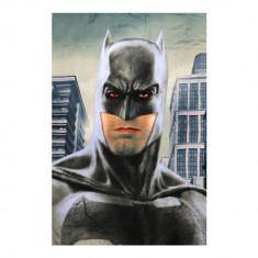Batman ? Patura copii 140X100 gri inchis
