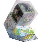 V-Cube 3x3. Animale salbatice