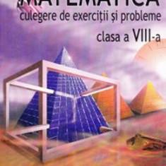 Matematica clasa 8. Culegere de exercitii si probleme - Petre Simion, Ion Marin - Manual scolar