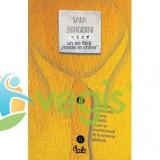 Un an fara made in China - Sara Bongiornu