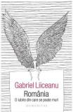 Romania, o iubire din care se poate muri - Gabriel Liiceanu, Gabriel Liiceanu