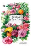 Bunele maniere (Larousse) - Sabine Denuelle