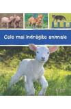 Cele mai indragite animale