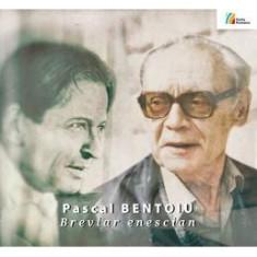 Breviar Enescian - Pascal Bentoiu - Carte amenajari interioare