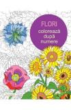 Flori: Coloreaza dupa numere, Else Lennox