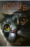 Pisicile Razboinice Vol.8: Rasarit de luna - Erin Hunter