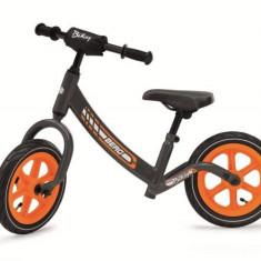 Bicicleta fara pedale Berg Biky Grey - Bicicleta copii Berg Toys